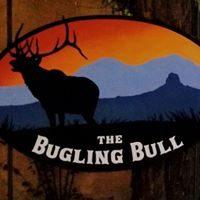 bugling bull.jpg